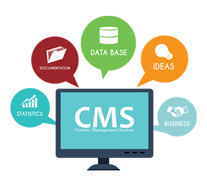 CMS Made Simple SEO Expert Services India