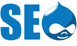 Drupal SEO Services India